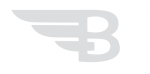 bitangels