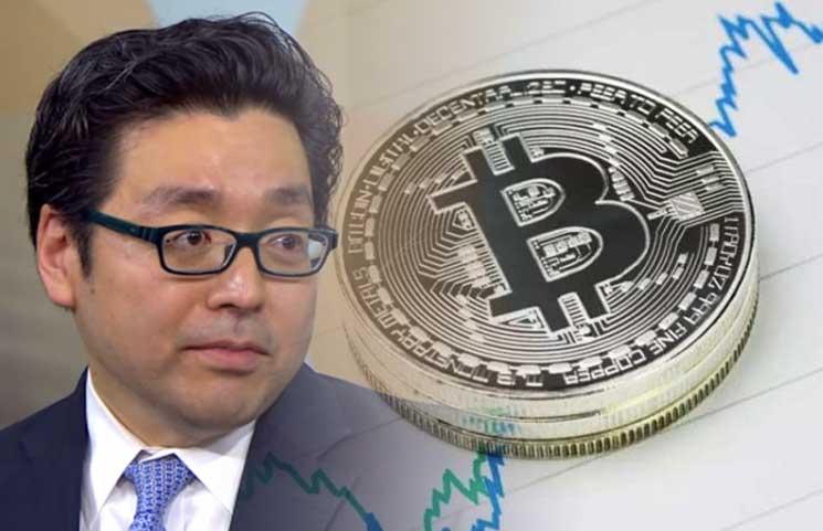 Tom Lee Bitcoin FOMO