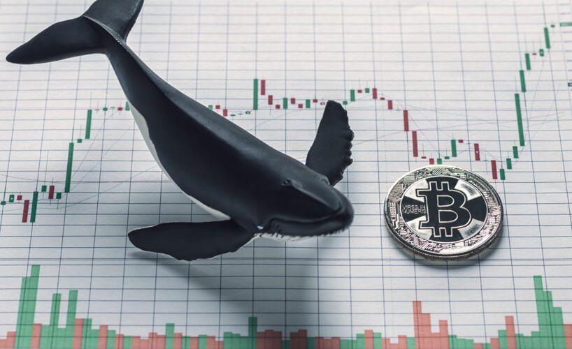 Bitcoin Balinası Binance