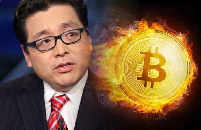 Bitcoin Tom Lee