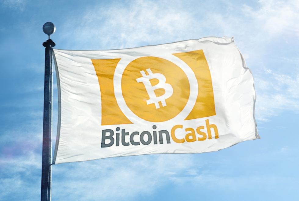 Tutarlı Öngörüleriyle Bilinen İsimden Korkutan Bitcoin Cash Tahmini