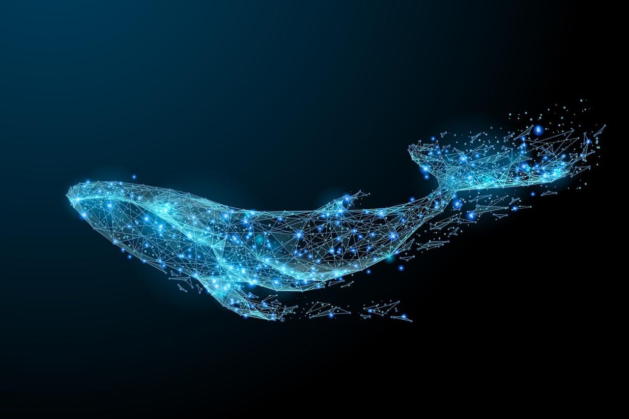 Bir Ethereum Balinası Sadece 007 Dolar Karşılığında 35 Milyon Dolarını Taşıdı