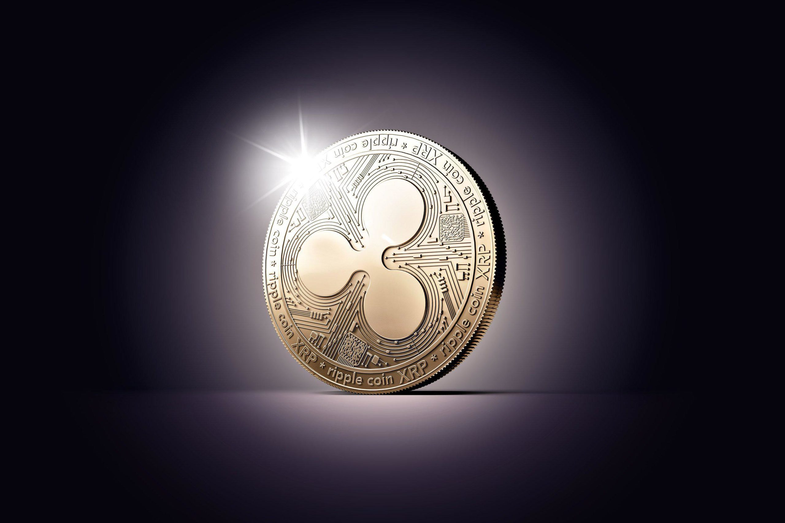 ripple xrp scaled