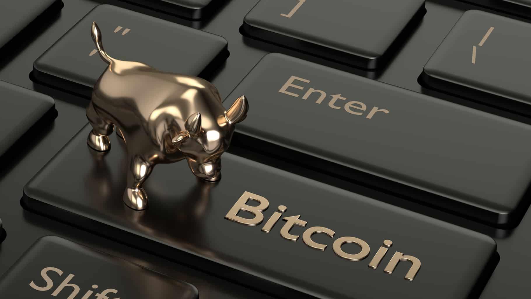 Bitcoin boğa koşusu ne zaman