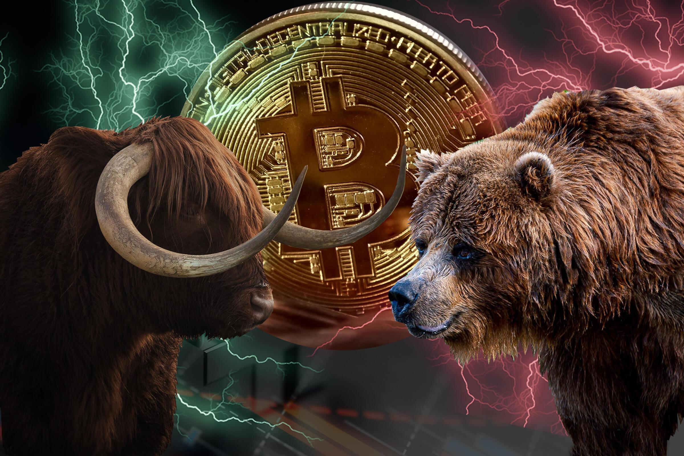 bitcoin boğa btc 2020