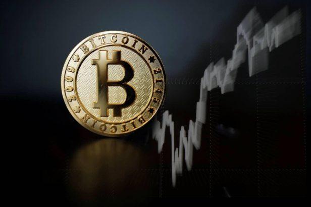 bitcoin hayatta kalan olacak