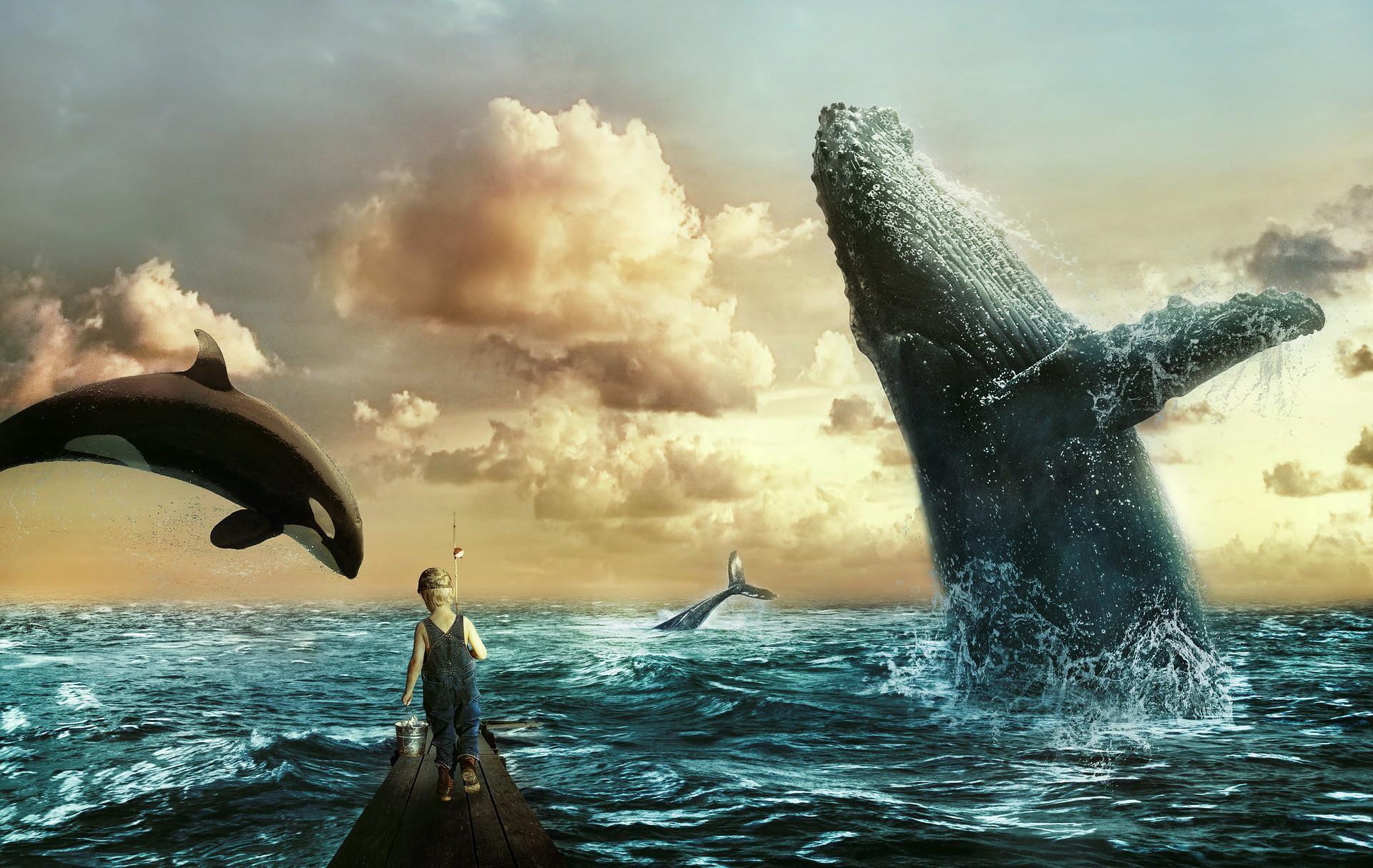 eth btc xrp balina