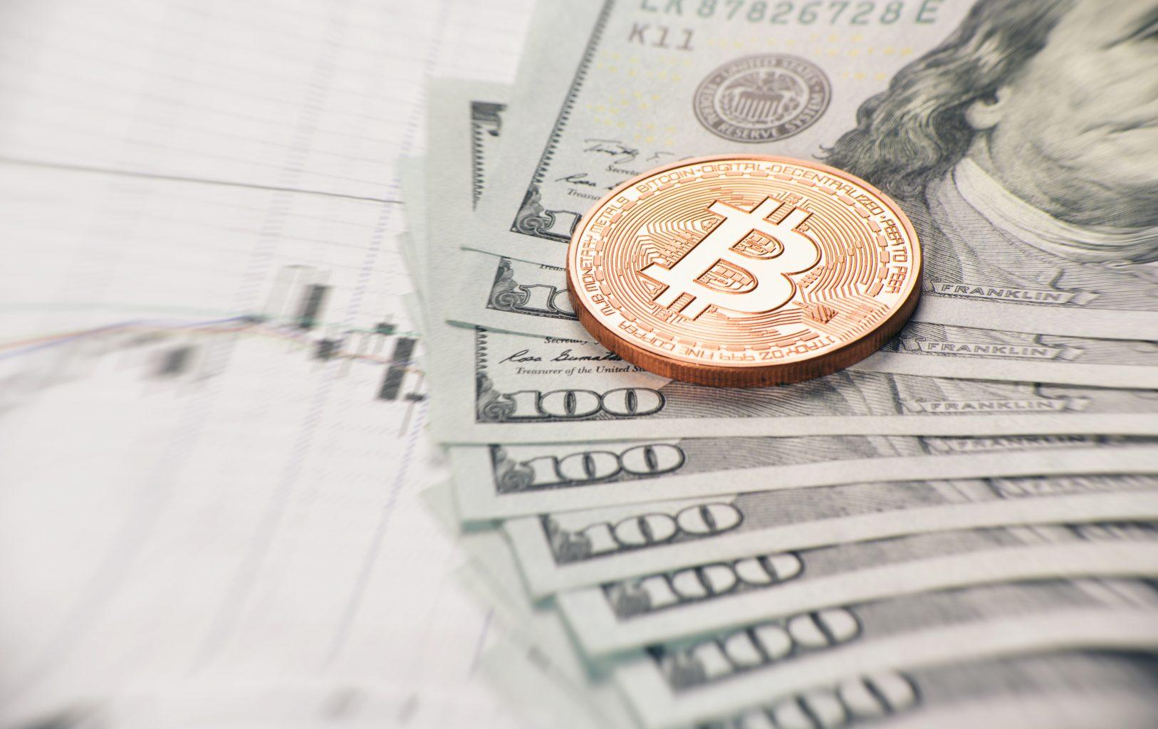 nternet Ödemelerinde Bitcoin BTC ABD Doları'nı Geçiyor