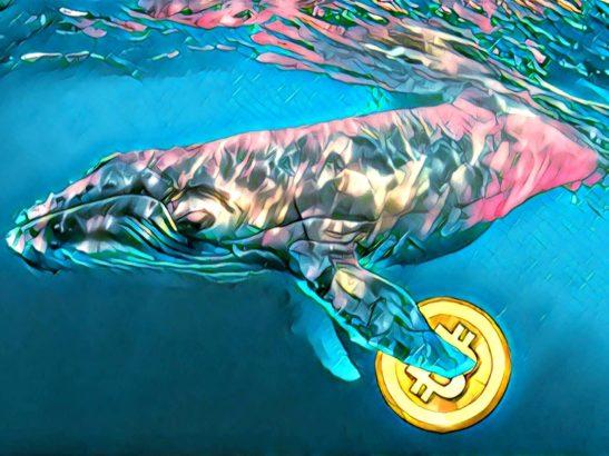 Bitcoin BTC Balinası Tek Bir İşlemde 445 Milyon Dolar Taşıdı