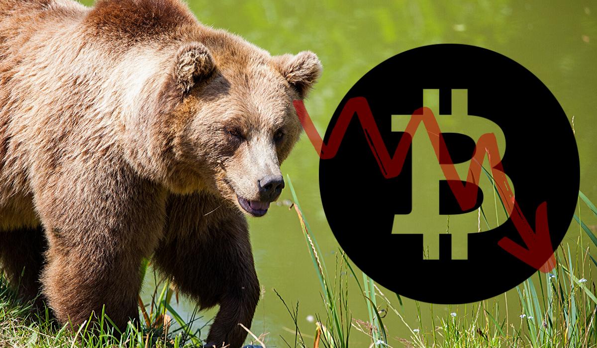 Bitcoin BTC Fiyat Eylemi 2014 Ayı Piyasasıyla Tutarlı Kaldı