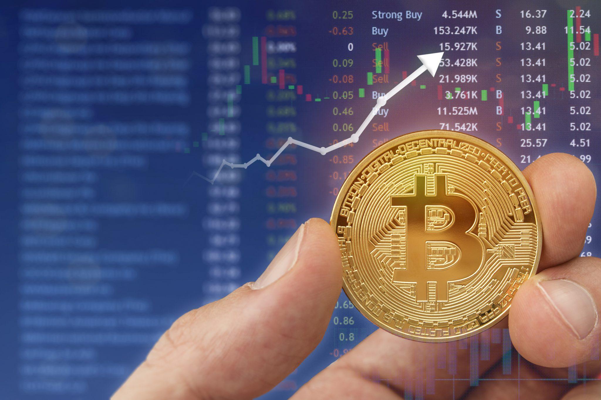 Bitcoin Boğaları Isınıyor İşte BTC'nin 230 Ralli Yaşayacağını Gösteren İşaretler