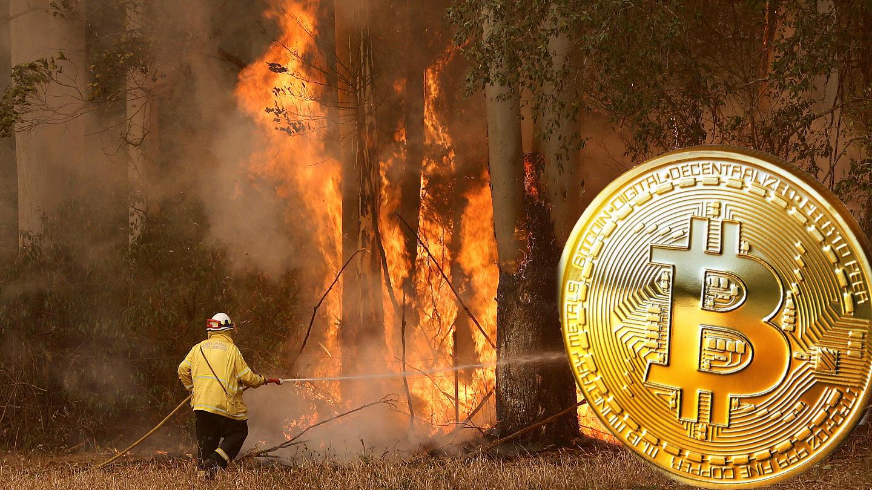 avustralya yangın bitcoin bagisi