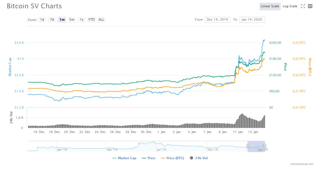 bitcoin SV 1 aylık grafik
