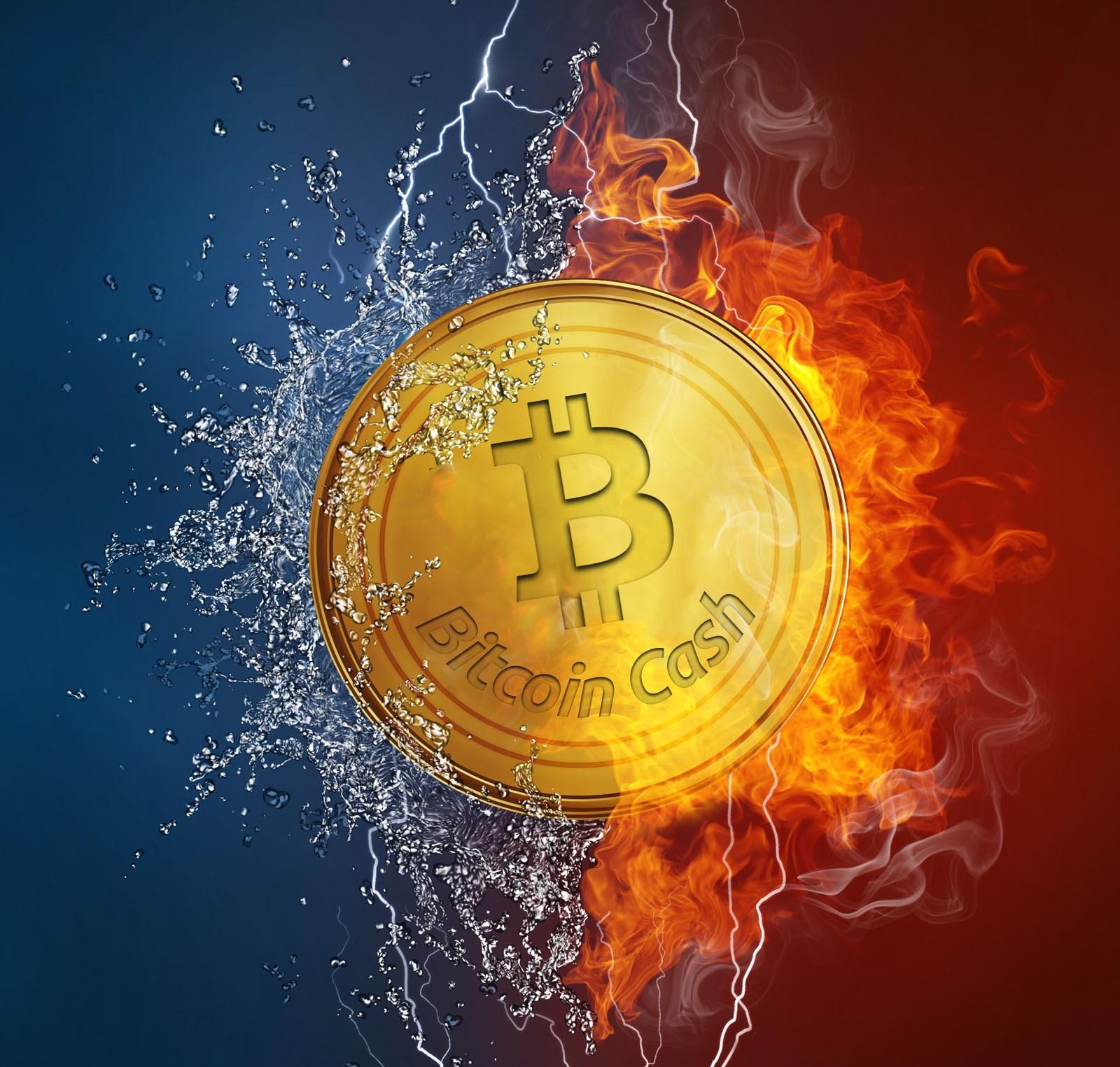 bitcoin cash destekçileri tedirgin 1