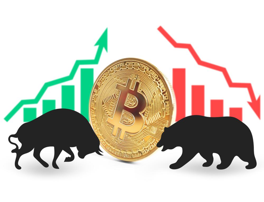 btc ayı bitcoin