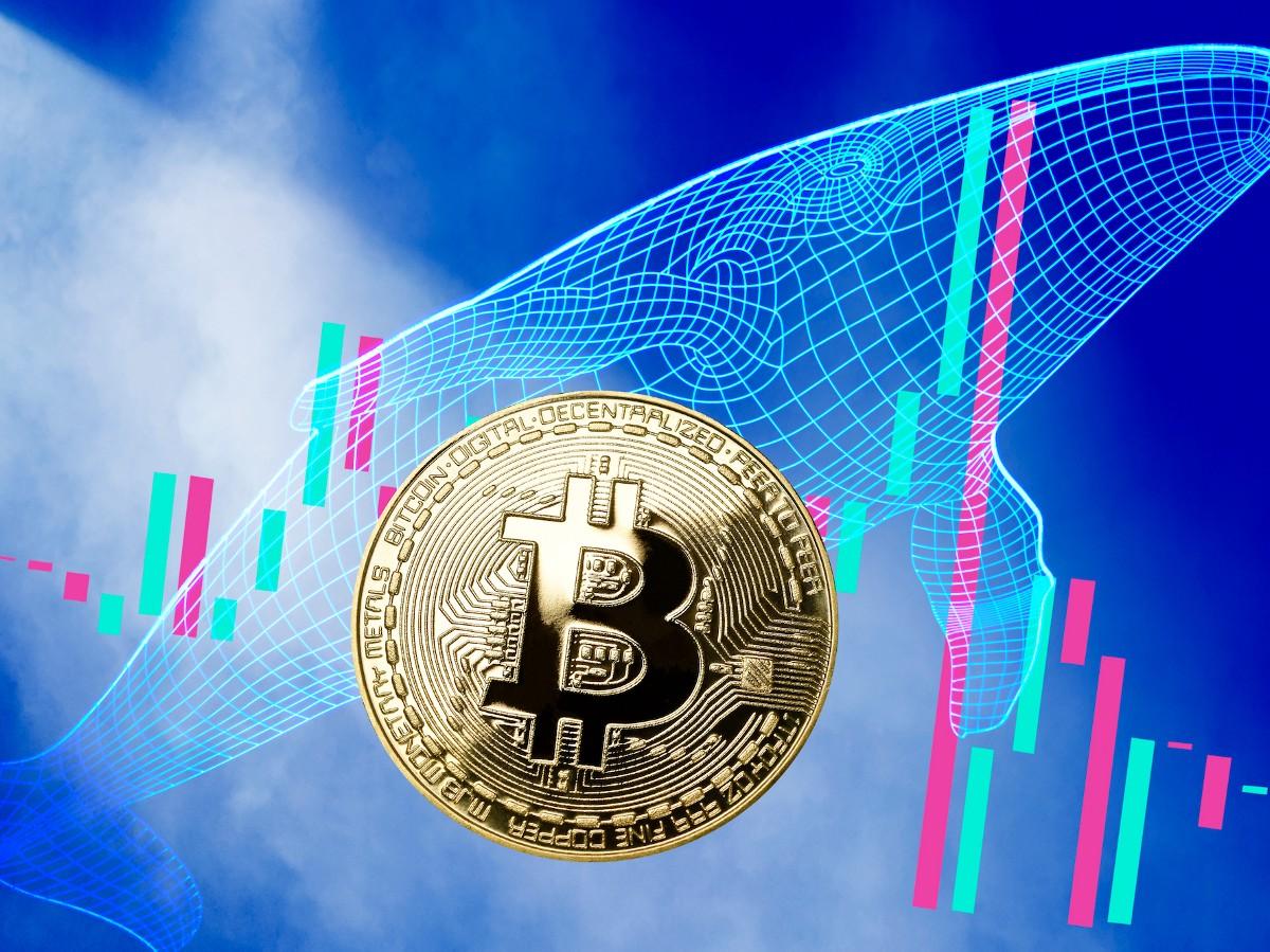 150 Milyon Dolarlık Bitcoin İşlemi Yapıldı