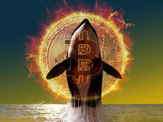 Bitcoin BTC Balinasından Kuşku Uyandıran 4847 Milyon Dolarlık Transferler