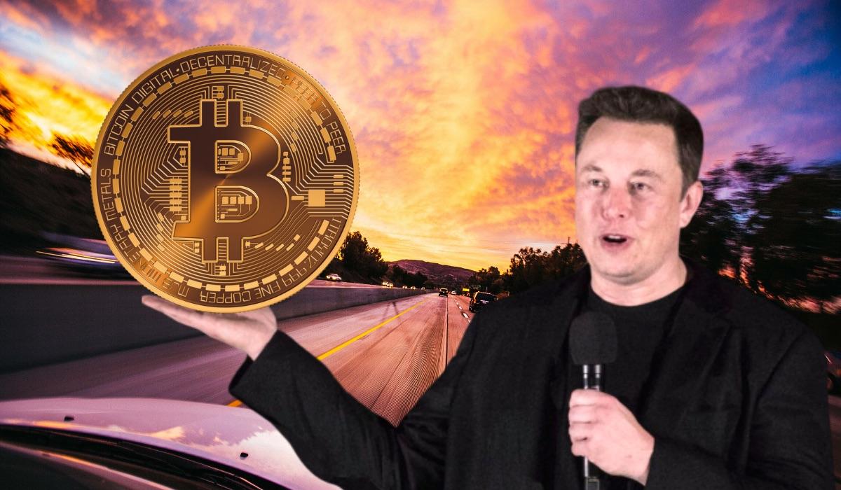 Elon Musk Kripto Para Dolandırıcıları