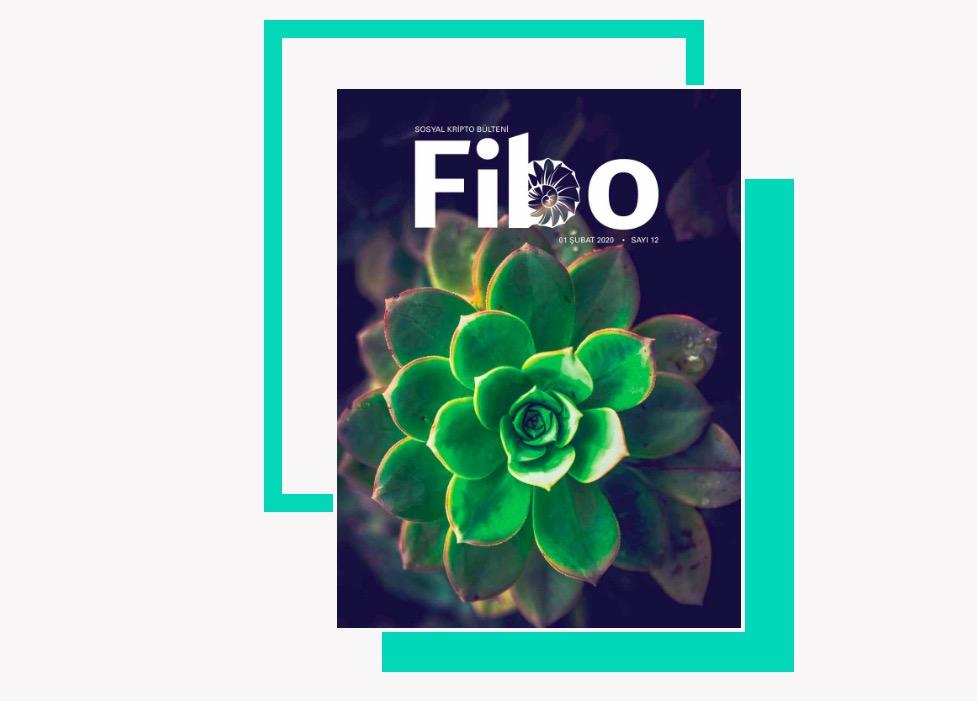Fibo Şubat 2020