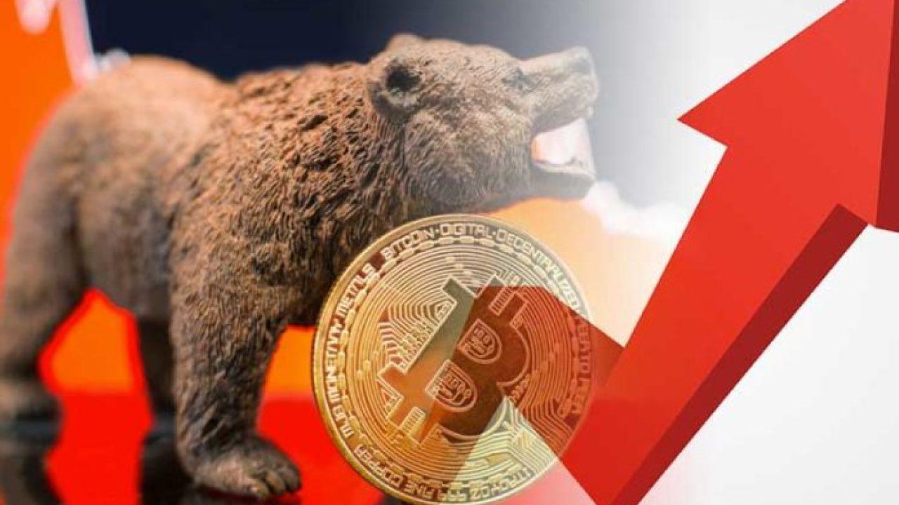 Bitcoin ayı