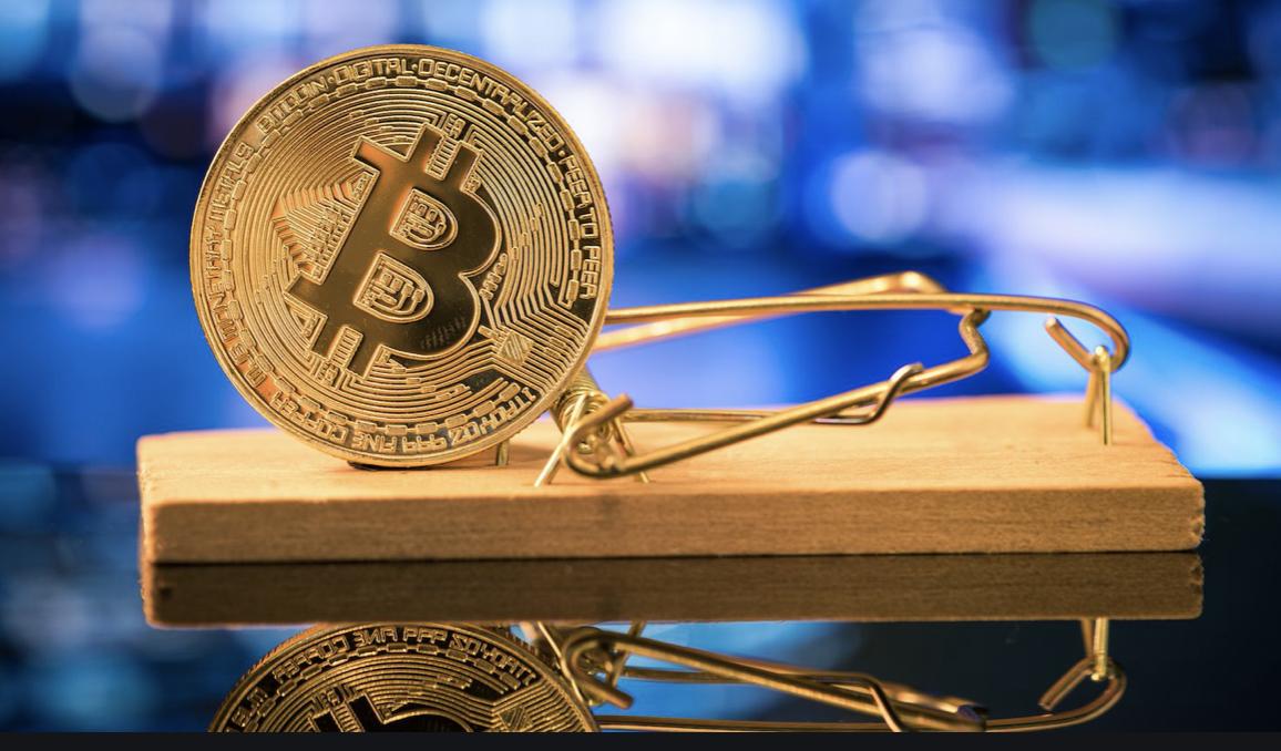 Bitcoin ayi tuzagi