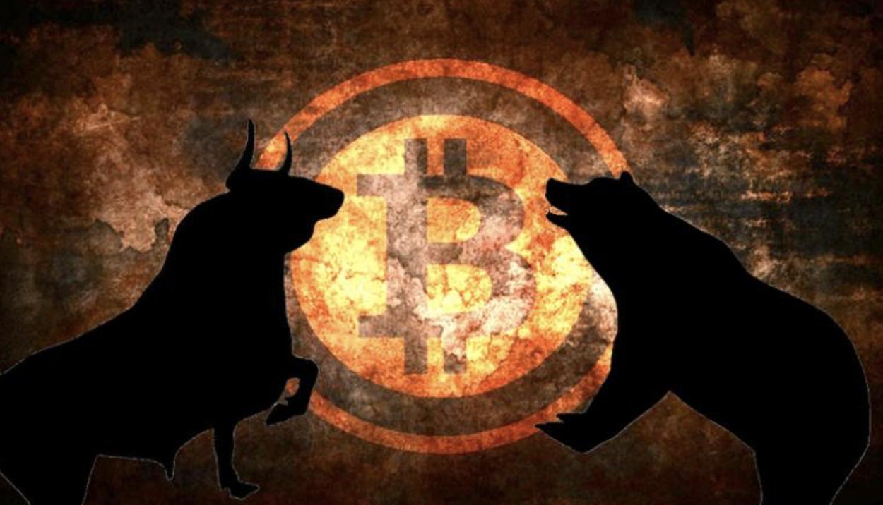 Bitcoin ayi ve bogalar