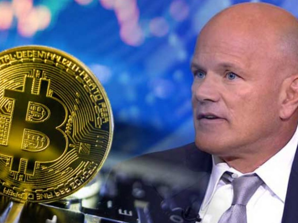 Bitcoin BTC Mike Novogratz Halving Oncesi Yorum