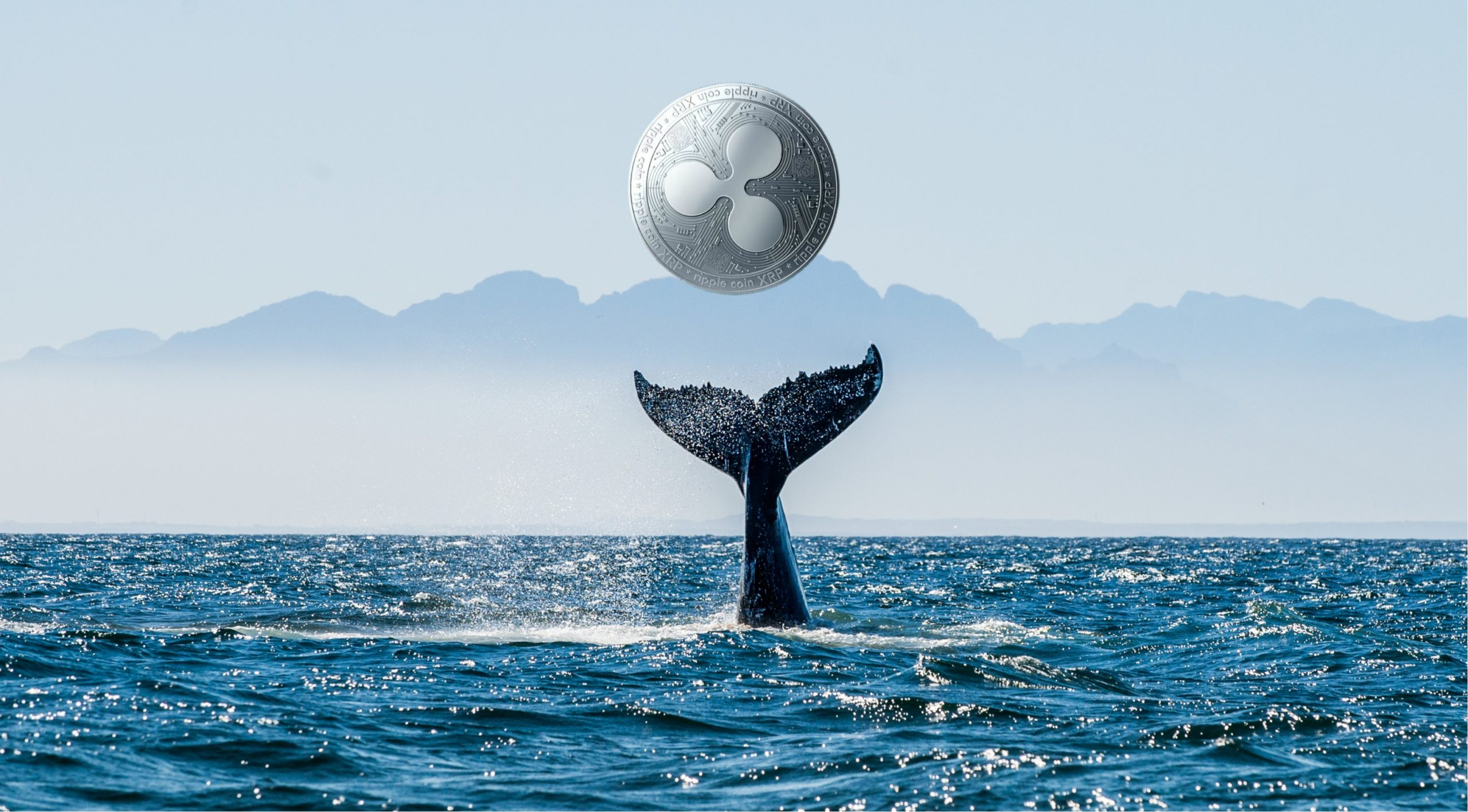 Ripple Balinaları Satış Hazırlığında Devasa XRP Borsalara Transfer Edildi scaled