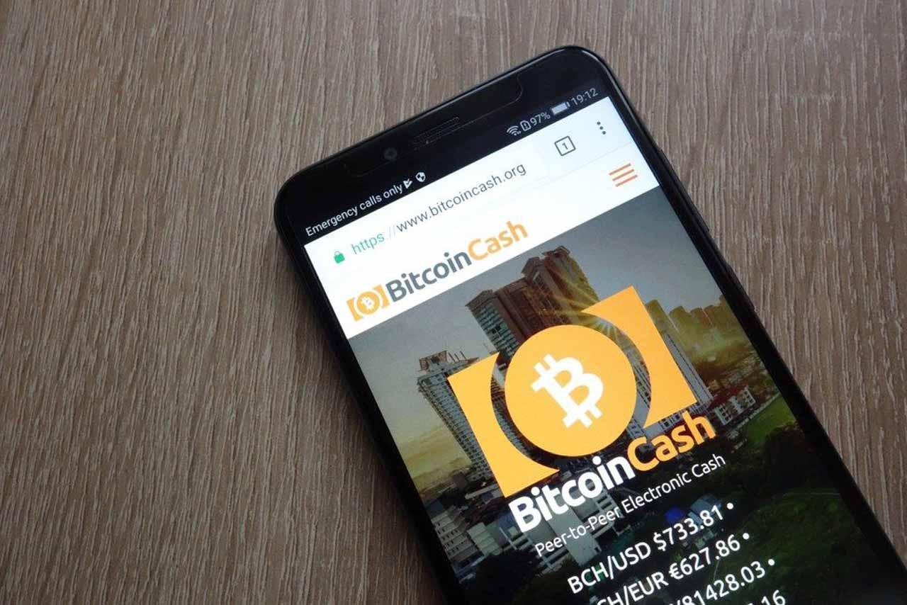 bitcoin cash bch için kritik gün ya yarılanma