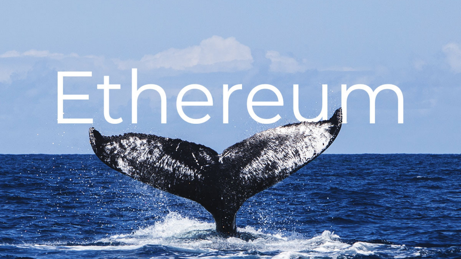ethereum balinaları biriktiriyor satmıyor