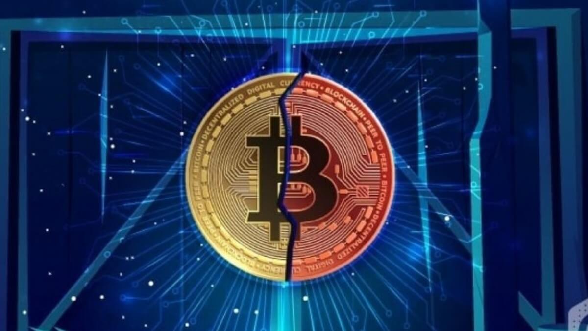 unlu isimlerden yarilanma sonrasi bitcoin tahminleri