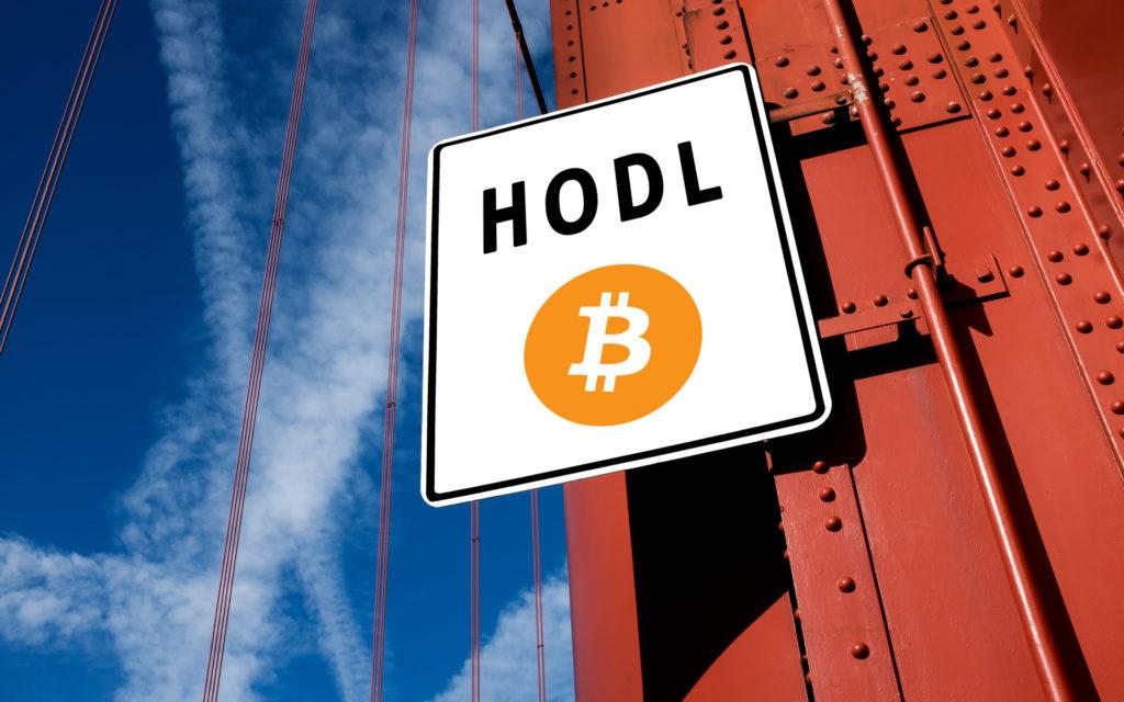 analistler açıkladı bitcoin hodl
