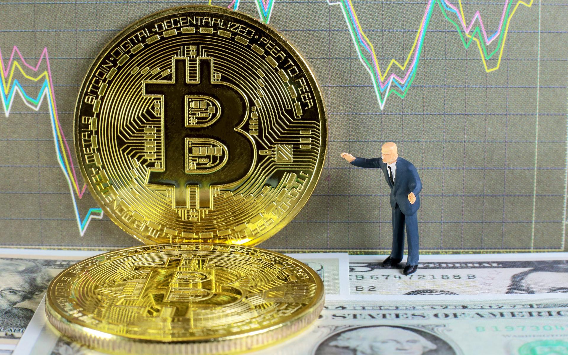 bitcoin hedge fonları