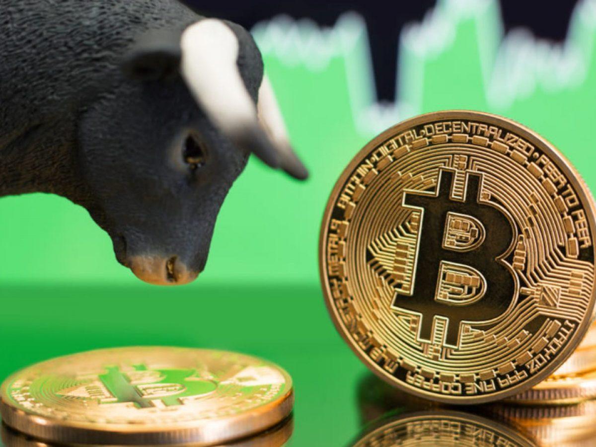 bitcoin pump btc