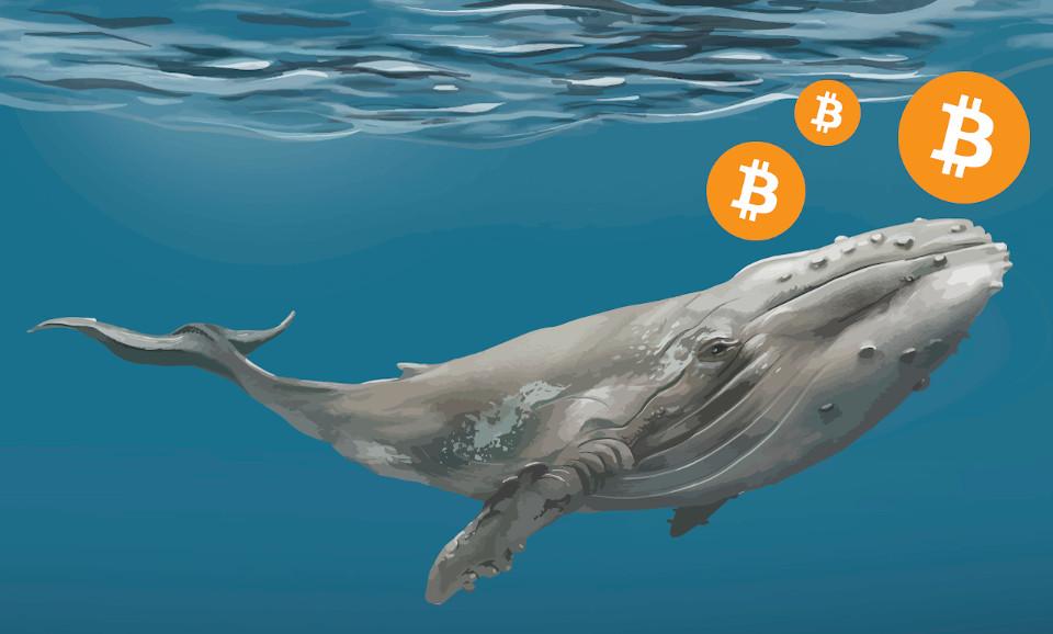 Balinalar Bitcoin'i BTC Bu Seviyeden Almak İçin Büyük Miktarda Alış Emri Girdi