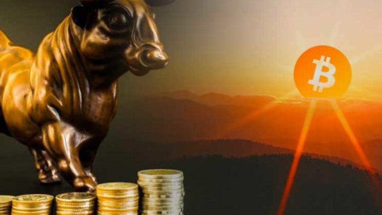 Jason Williams Bitcoin BTC Dört Ayın Sonunda 20.000 Dolara Ulaşacak