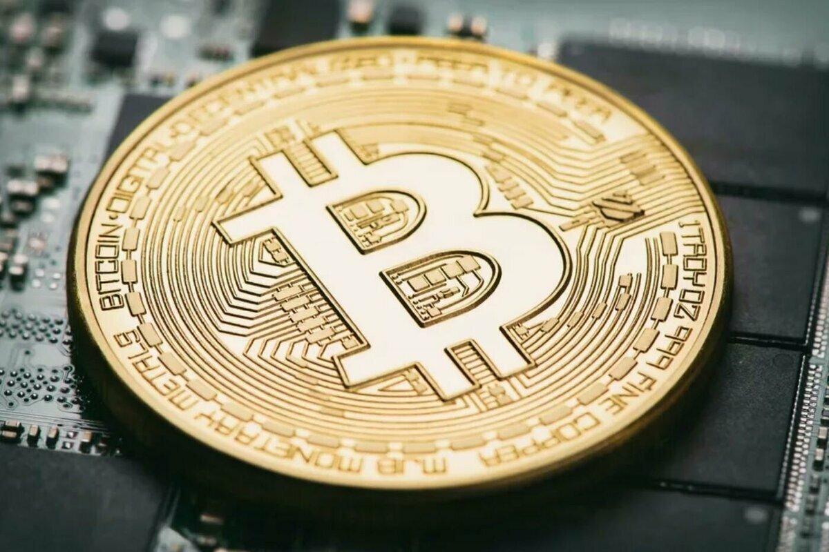 analist berk tavşan bitcoin btc