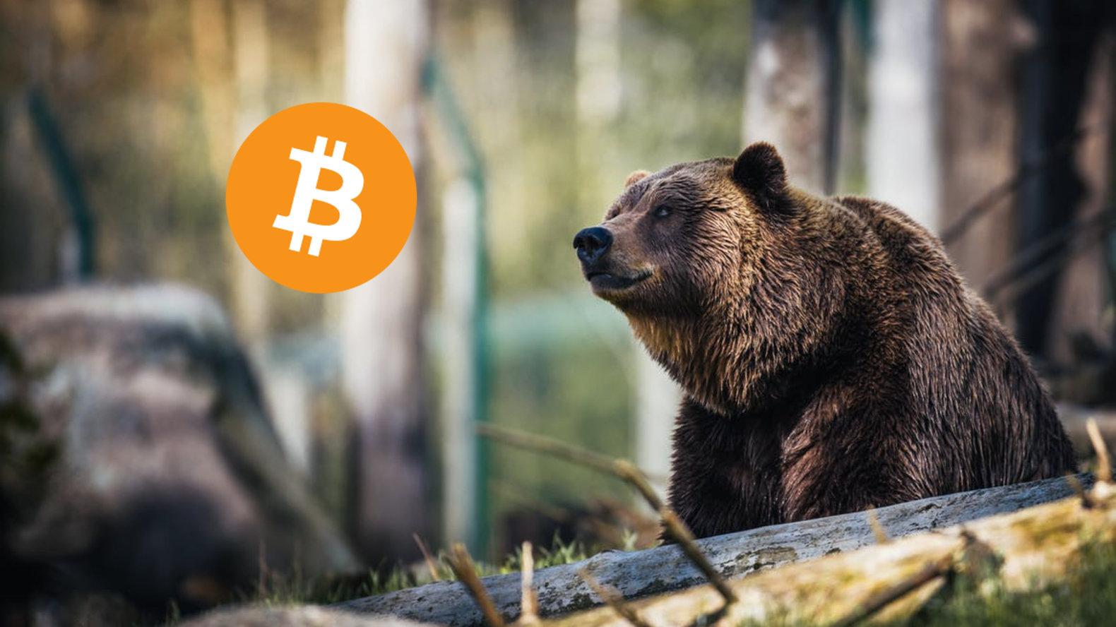 bitcoin ayi piyasasi eylül ayina kadar devam edebilir