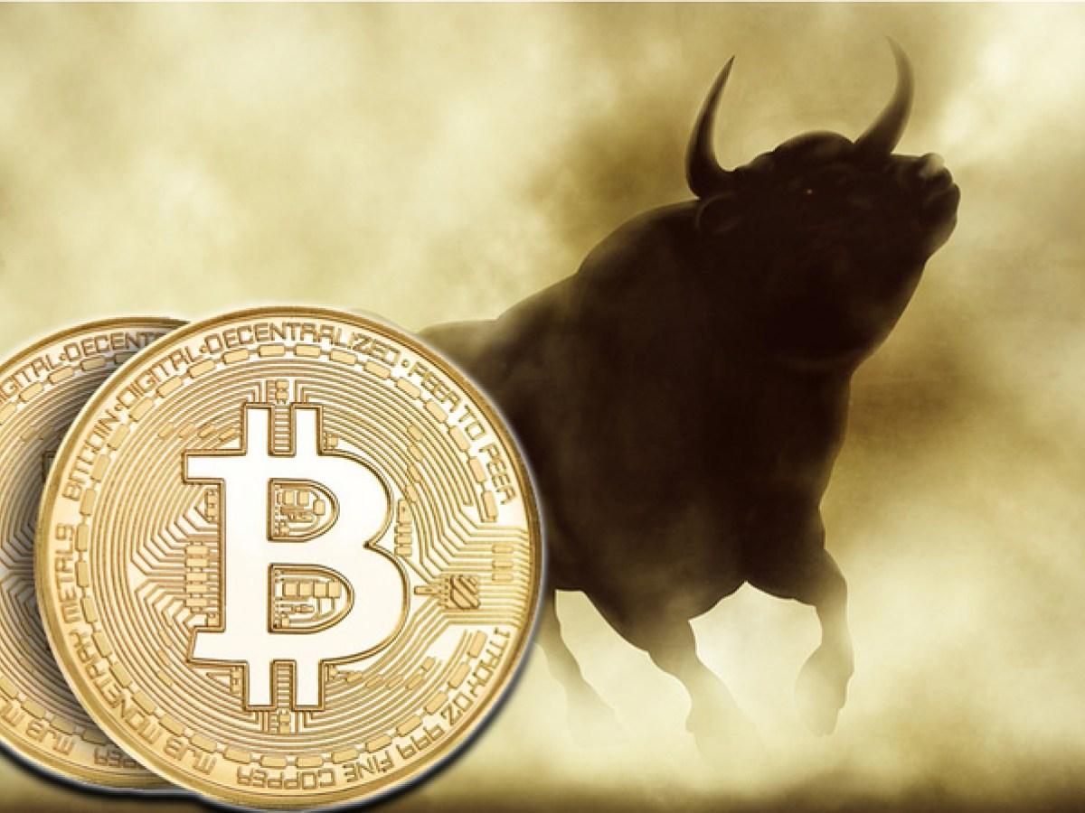 bitcoin sahipleri