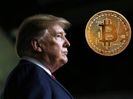 trump bitcoin