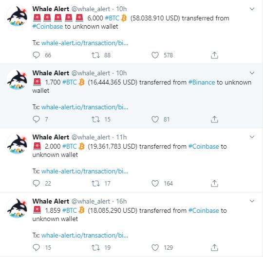 whale alert bitcoin balinaları transferler