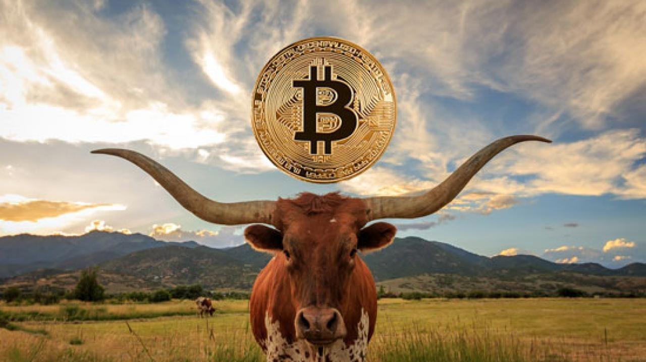 Bitcoin BTC Tarihin En Büyük Boğa Koşusuna Başlayabilir