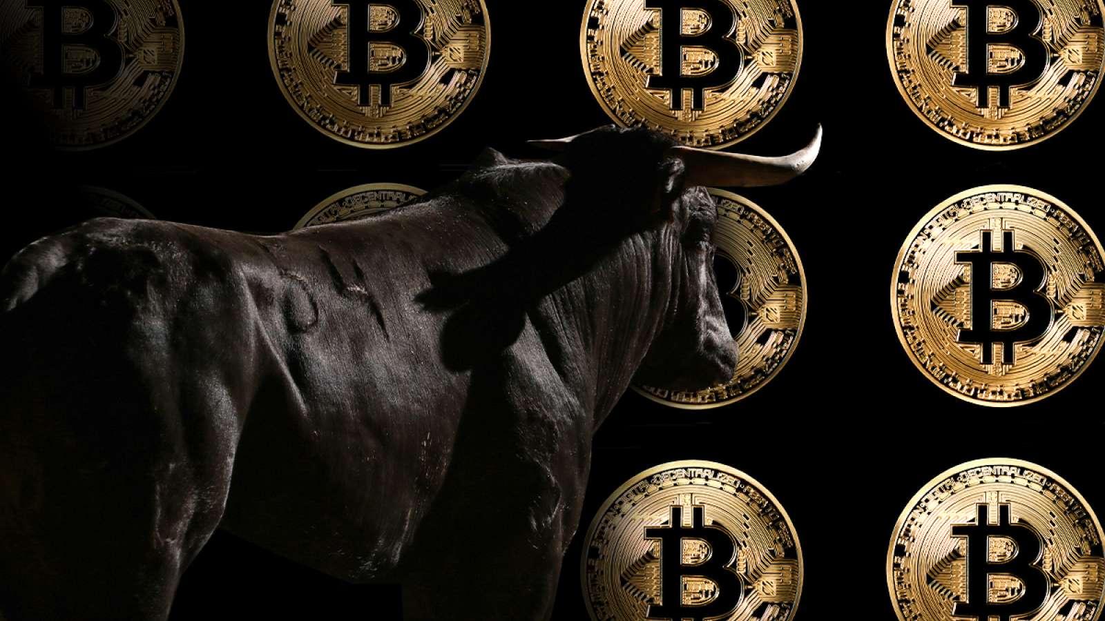 Bitcoin Boğaları Bunu Beğendi BTC'nin Gerçek Değeri 13.000 Dolar