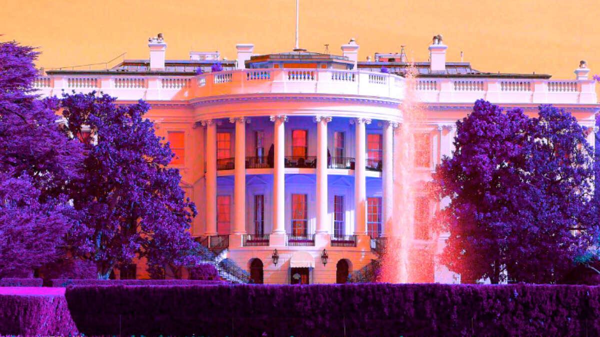 Trump Seçimleri Kazanacak Mı Augur Cevaplıyor