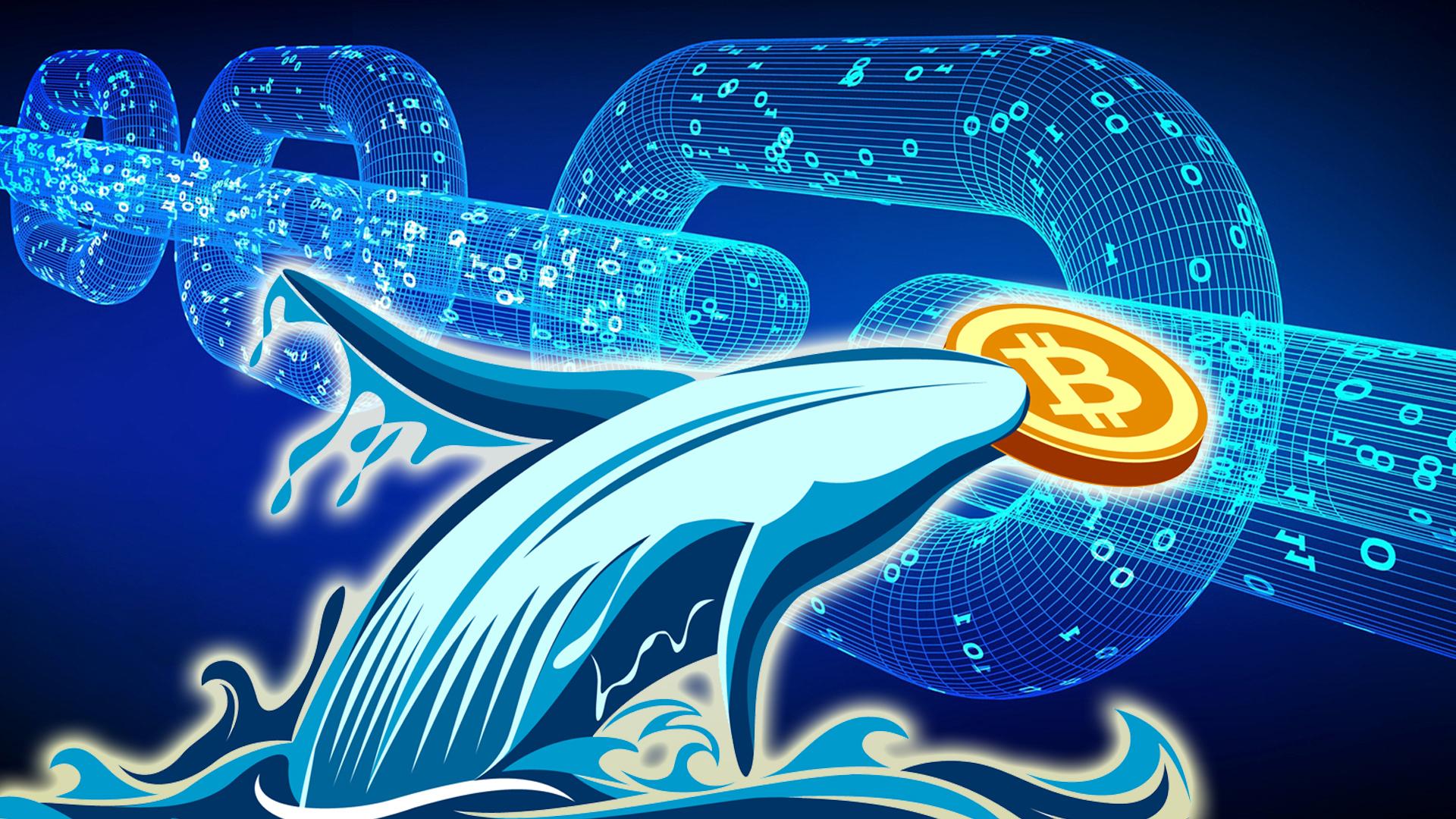 bitcoin btc balinaları harekete geçti