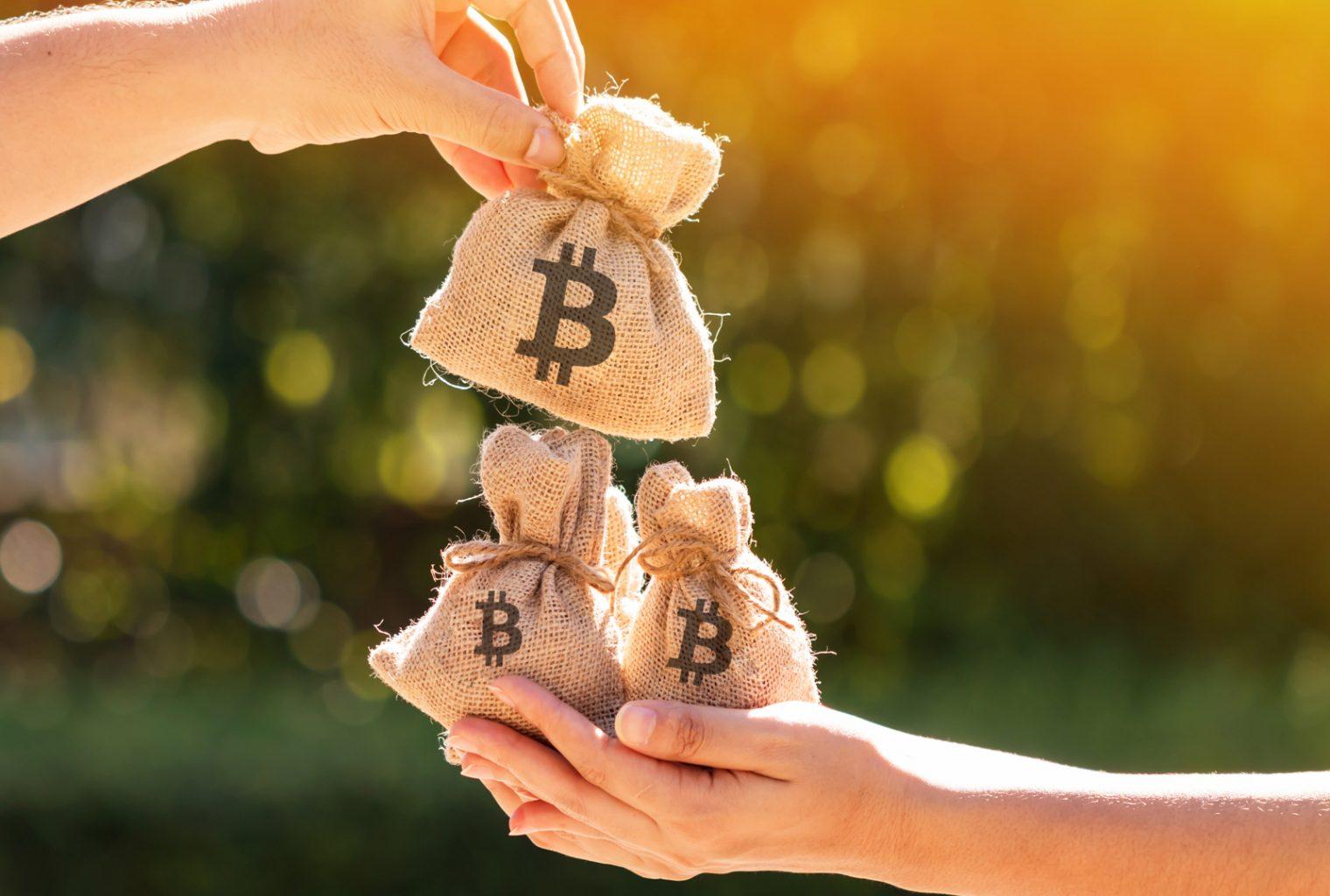 Kurumsal Sirket En Degerli Yatirim Bitcoin Dedi ve 250 Milyon Dolarlik BTC Aldi