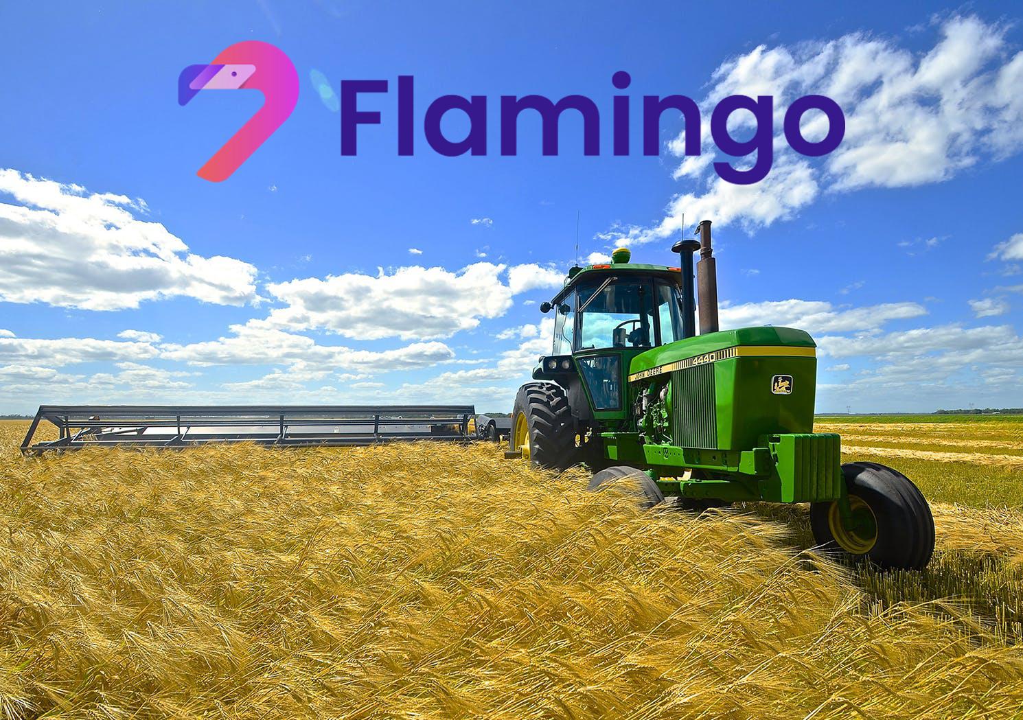 flamincome yield farming