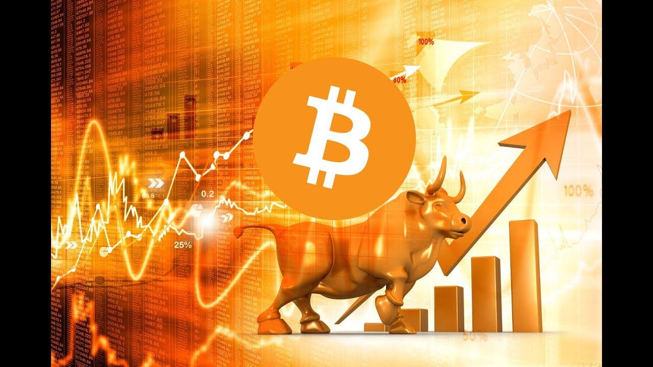 bitcoin boga kosusu