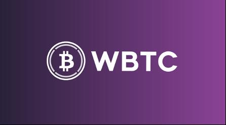 en iyi 10 defi platformu wbtc
