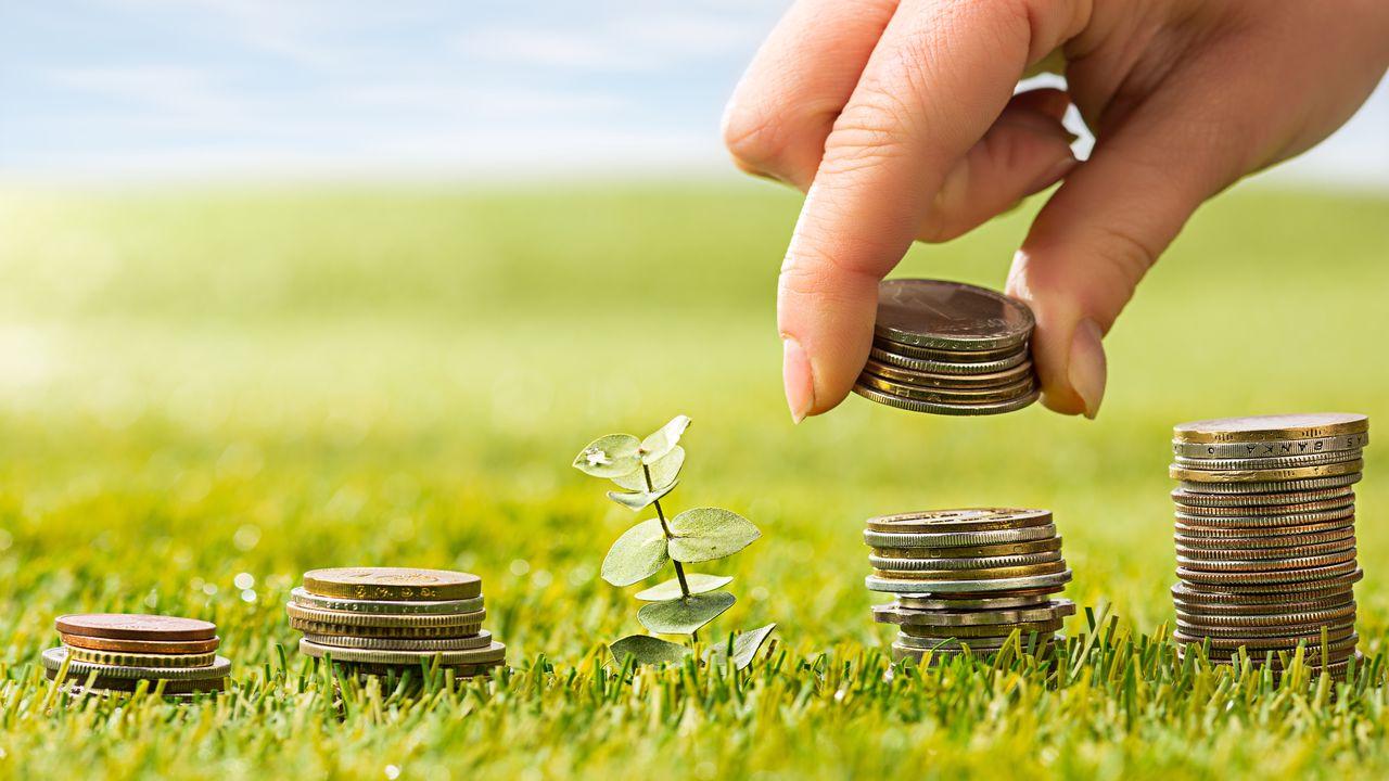 finans hizmetleri devinden portfoy tavsiyesi